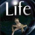 Unser Leben | Das Wunder Leben – atemberaubendes Meisterwerk