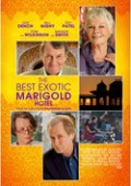 The Best Exotic Marigold Hotel | Judi Dench | Maggie Smith | Kritik
