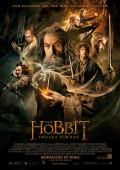 Der Hobbit: Smaugs Einöde 3D [RatingOnly]