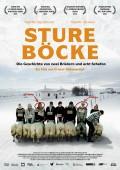 Rams – Sture Böcke | Sigurður Sigurjónsson | Theodór Júlíusson | Grímur Hákonarson | BlitzRating