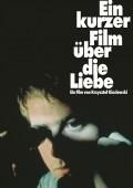 EIN KURZER FILM ÜBER DIE LIEBE | Krzysztof Kieślowski | BlitzRating