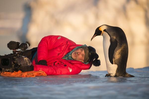 Reise_der_Pinguine_II_Filmstill_12