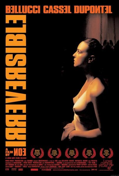 Irreversibel-poster