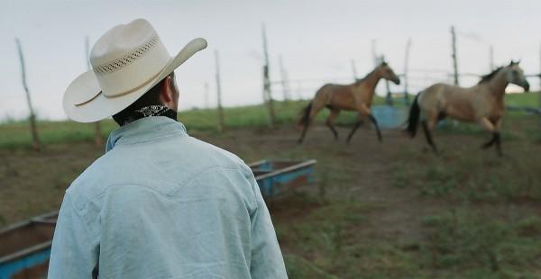 The_Rider_Filmstill_08