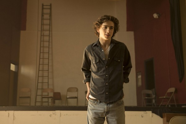 beautiful-boy-mit-timothee-chalamet-2