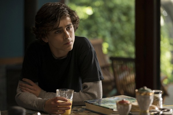 beautiful-boy-mit-timothee-chalamet