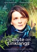 DIE BLÜTE DES EINKLANGS | Juliette Binoche | Naomi Kawase | Kino-Tipp